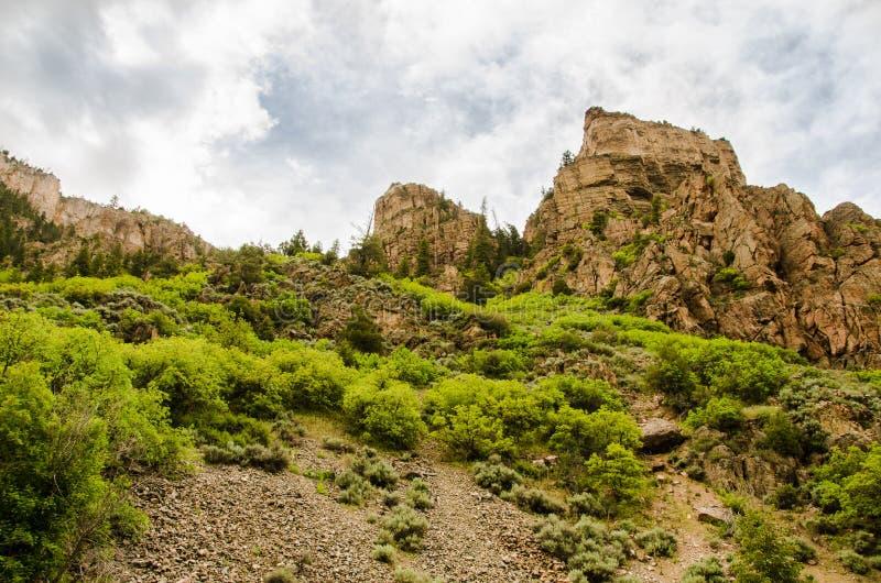 Vorberge Colorados Rocky Mountain lizenzfreies stockfoto