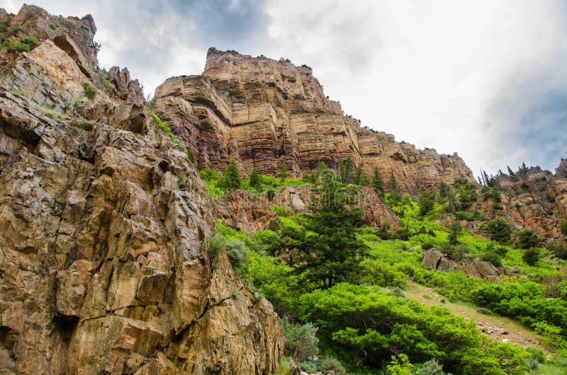 Vorberge Colorados Rocky Mountain stockbilder