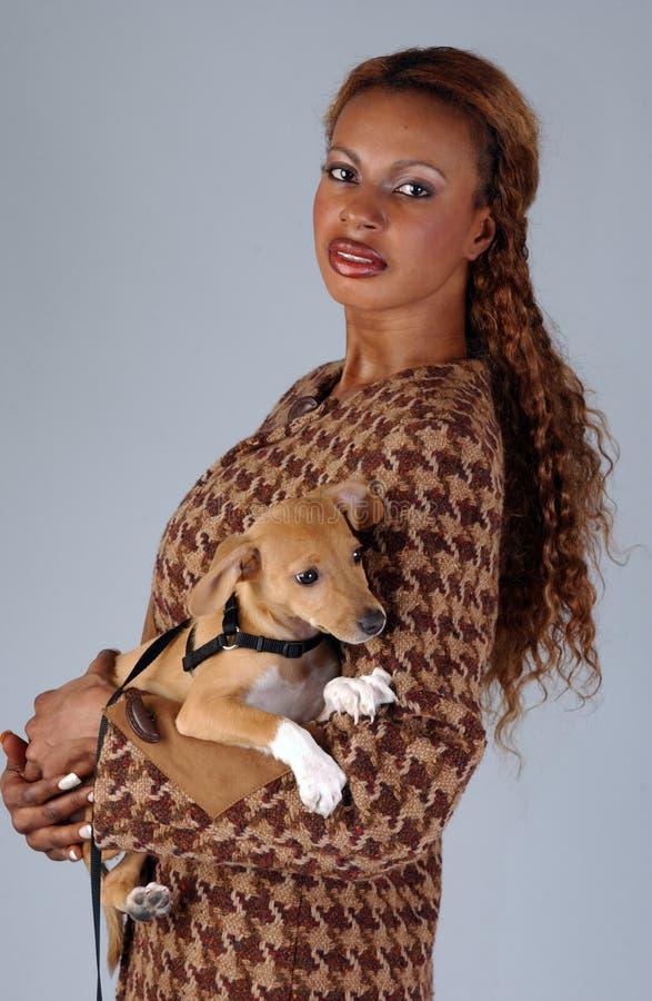 Vorbildliche Aufstellung des schönen Afroamerikaners mit Hund lizenzfreie stockfotografie