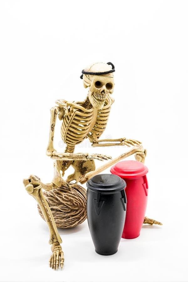 Vorbildliche skeleton spielende Congatrommel stockbilder