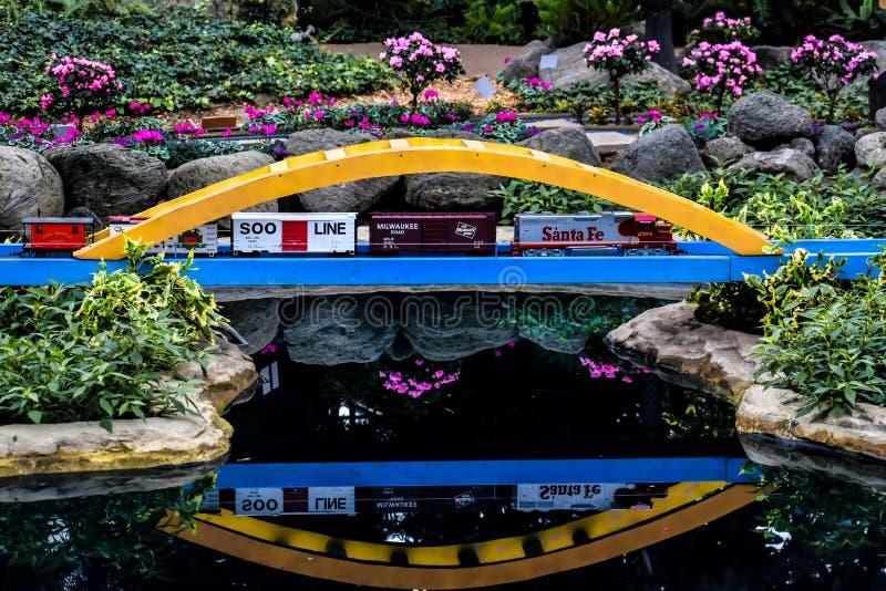 Vorbildliches Train, Brücke mit Reflexion lizenzfreie stockfotografie