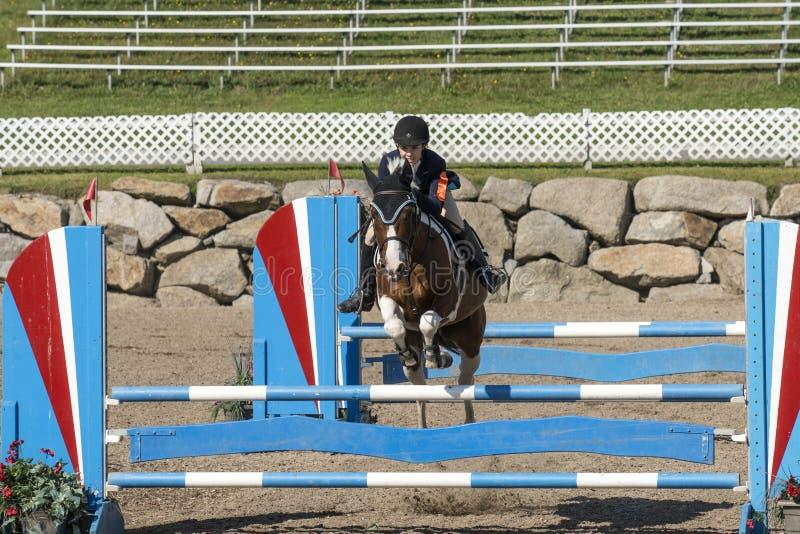 Vorderansicht Des Pferds Mit Dem Reiter, Der Einen Sprung