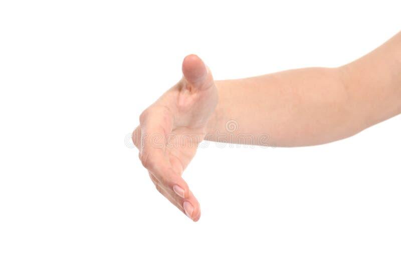 Vorderansicht einer Frauenhand bereit zum Händedruck lizenzfreie stockfotos