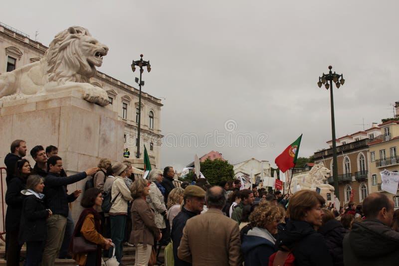 Vorführer, die mit Plakaten gegen Euthanasie in Lissabon protestieren lizenzfreies stockbild