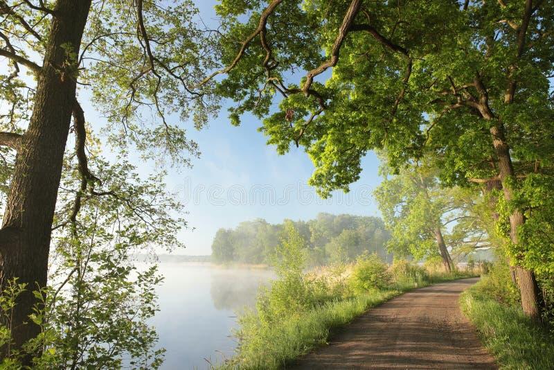 Vorfrühlingslandschaft auf einem nebelhaften Morgen lizenzfreies stockfoto