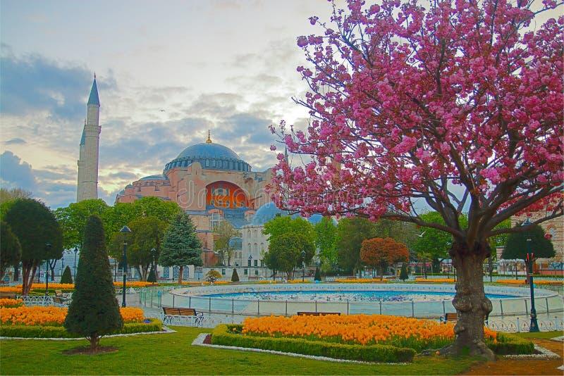 Vorfrühlingsmorgen auf Sultan Ahmed Square in der Türkei lizenzfreies stockbild