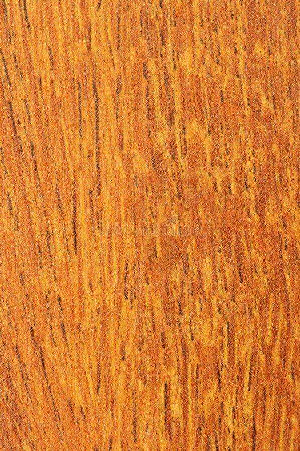 Vorher abgeschlossene Hartholzfußbodenprobe stockbild