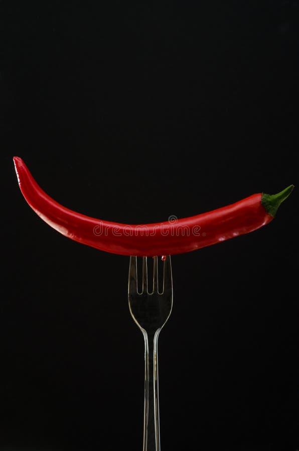 Vork met grote Spaanse peper en peterselie royalty-vrije stock afbeelding