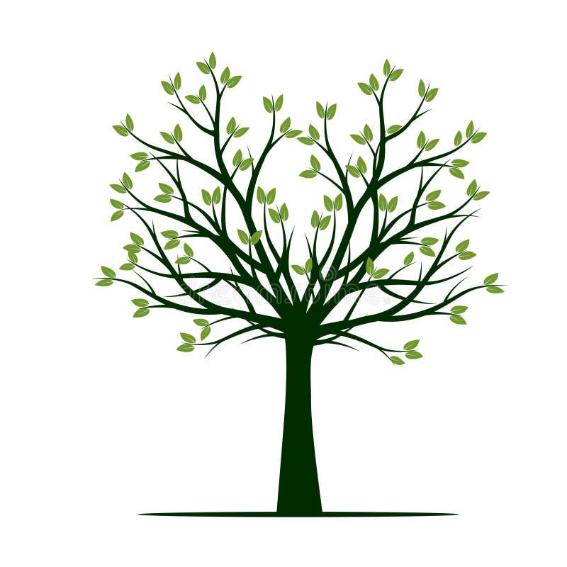 Vorm van groene de Lenteboom Vector illustratie stock illustratie