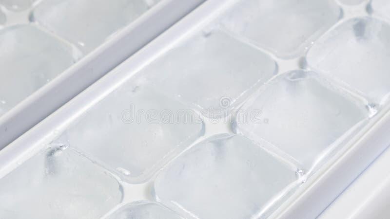 Vormt ijsblokje in wit ijsdienblad, sluit omhoog royalty-vrije stock afbeelding