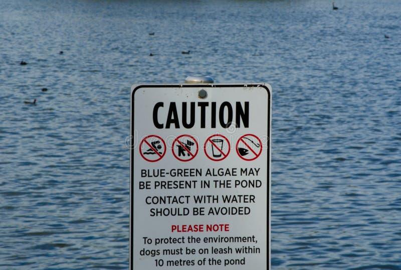 Vorsichtzeichen für ` im Teichkontakt mit Wasser sollte vermieden werden, keine Schwimmen, kein Fischen, und Hunde müssen auf Lei lizenzfreies stockfoto