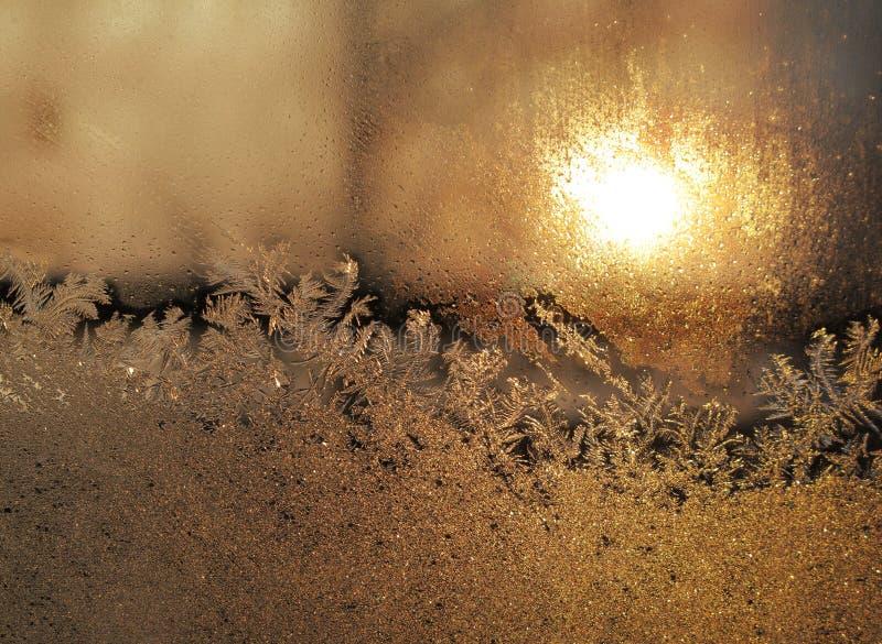 Vorst en zon stock afbeelding