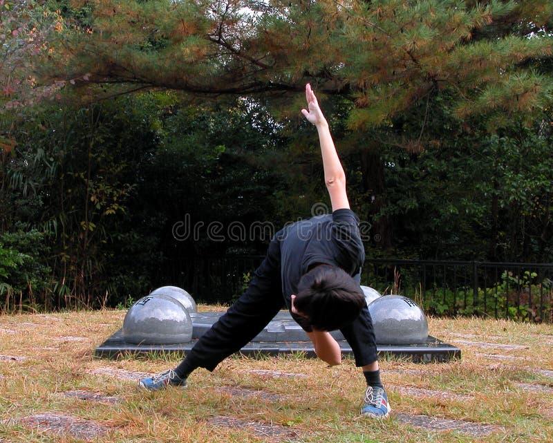 Download Vorwärmungsbewegungen stockbild. Bild von gymnast, tätigkeit - 43153