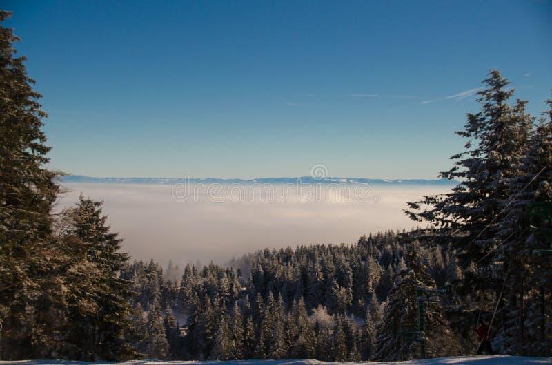 Vosges2014-11 photo stock