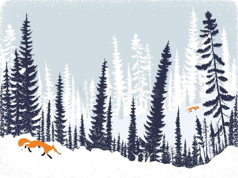Vossen in het bos royalty-vrije illustratie