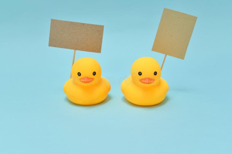 Vote el concepto, los patos de goma están sosteniendo letreros imagen de archivo