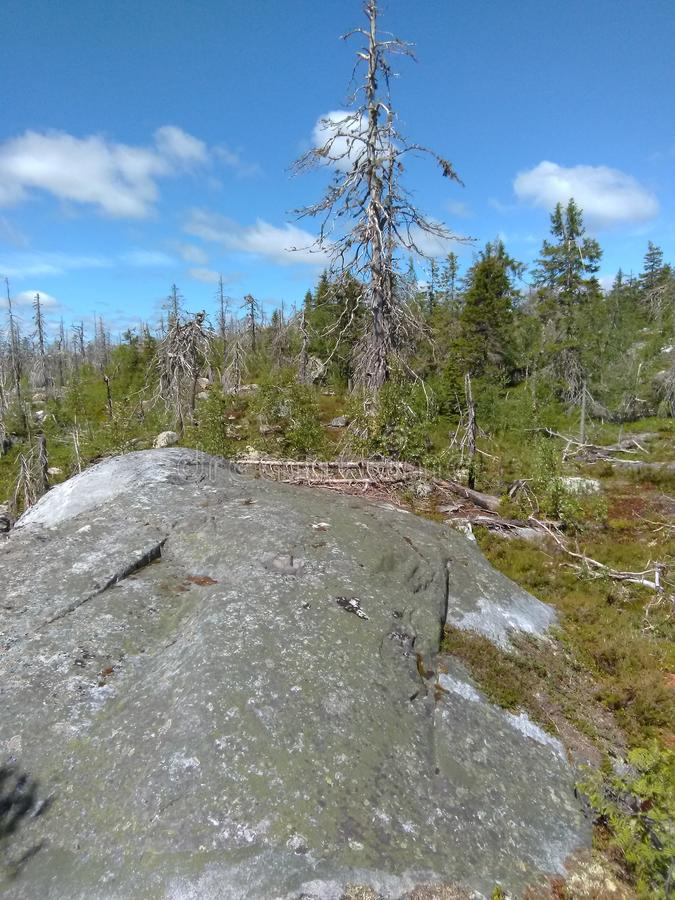 Vottovaara Karelië stock fotografie
