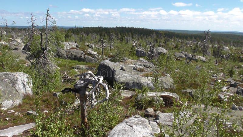 Vottovaara Karelië stock afbeeldingen