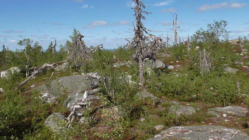 Vottovaara Karelië royalty-vrije stock afbeelding