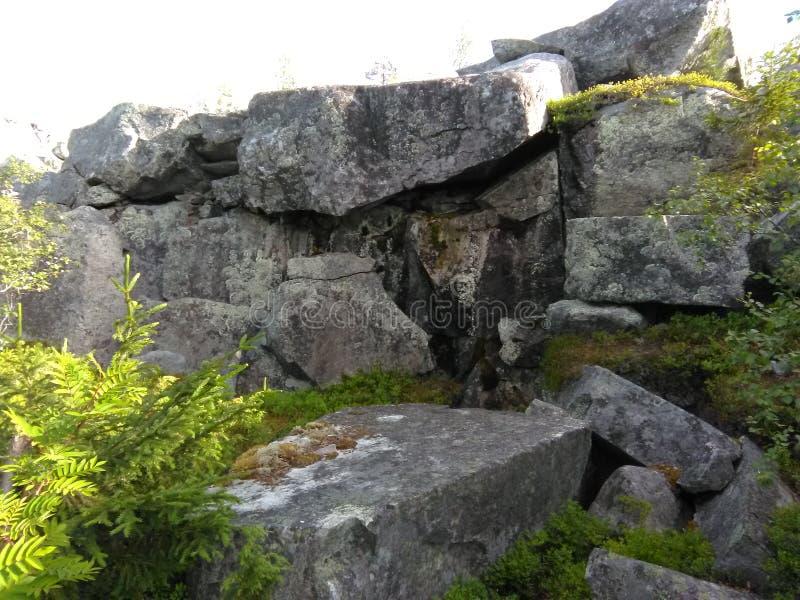 Vottovaara Karelia royaltyfri bild