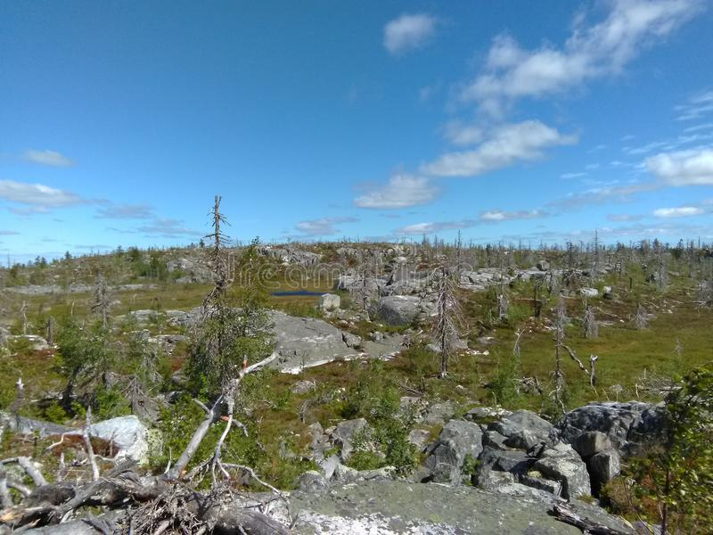 Vottovaara Karelia - amphitheater. Abnormal mountain in Karelia, ugly trees, mystical landscapes. There are more than one and a half thousand stone sades. The stock photo