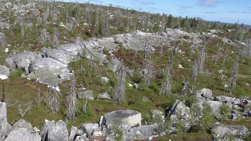 Vottovaara Karelia - Amphitheatre. Abnormal mountain in Karelia, ugly trees, mystical landscapes. There are more than one and a half thousand stone sades. The royalty free stock photo