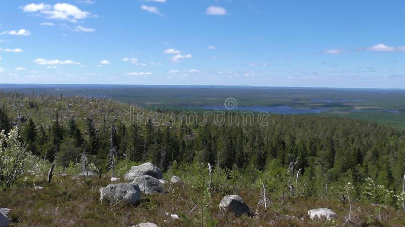 Vottovaara Karelia - Mountain view of the lake Vottoozero & ugly trees. Abnormal mountain in Karelia, ugly trees, mystical landscapes. There are more than one stock photos