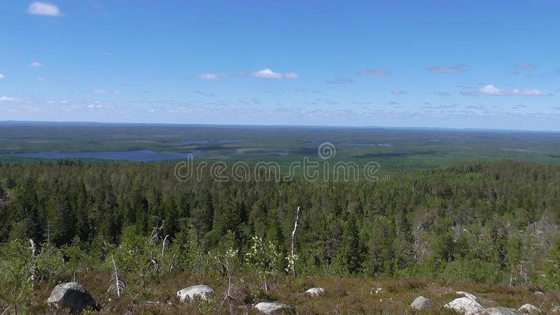 Vottovaara Karelia - Mountain view of the lake Vottoozero & ugly trees. Abnormal mountain in Karelia, ugly trees, mystical landscapes. There are more than one stock photography