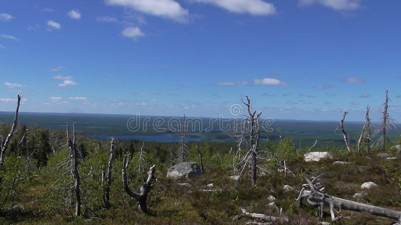 Vottovaara Karelia - Mountain view of the lake Vottoozero & ugly trees. Abnormal mountain in Karelia, ugly trees, mystical landscapes. There are more than one stock image