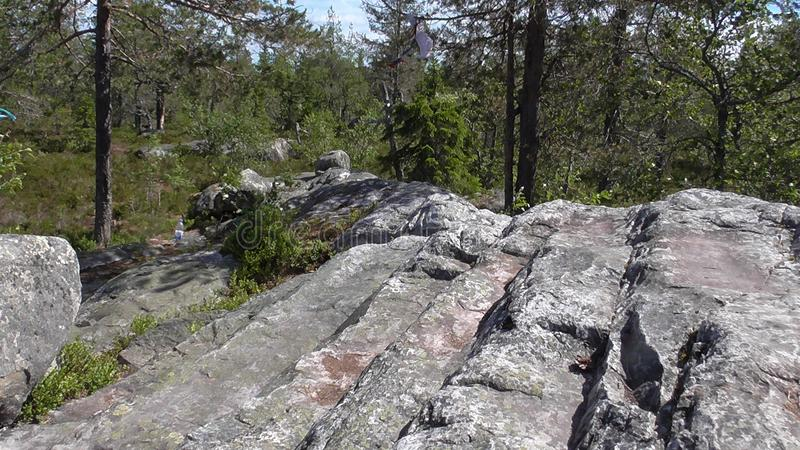 Vottovaara Karelia - stone stairway to heaven. Abnormal mountain in Karelia, ugly trees, mystical landscapes. There are more than one and a half thousand stone royalty free stock photos