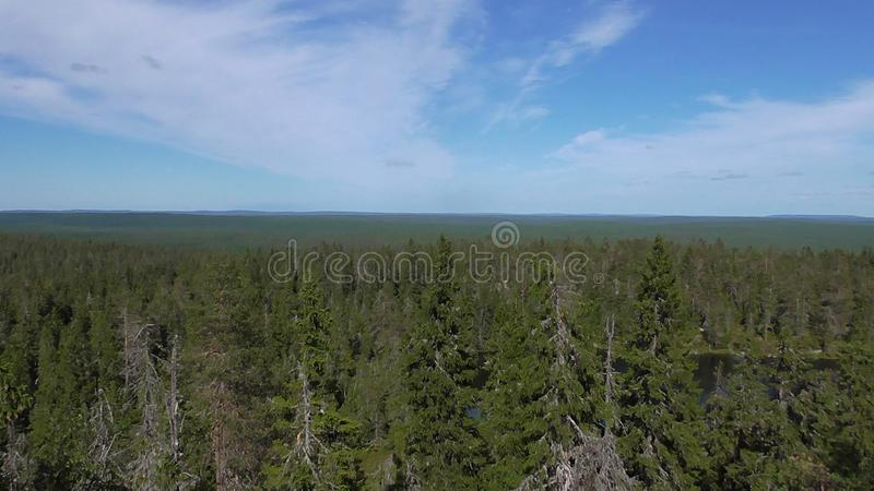 Vottovaara Karelia - the view from the top of the mountain. Abnormal mountain in Karelia, ugly trees, mystical landscapes. There are more than one and a half stock photography