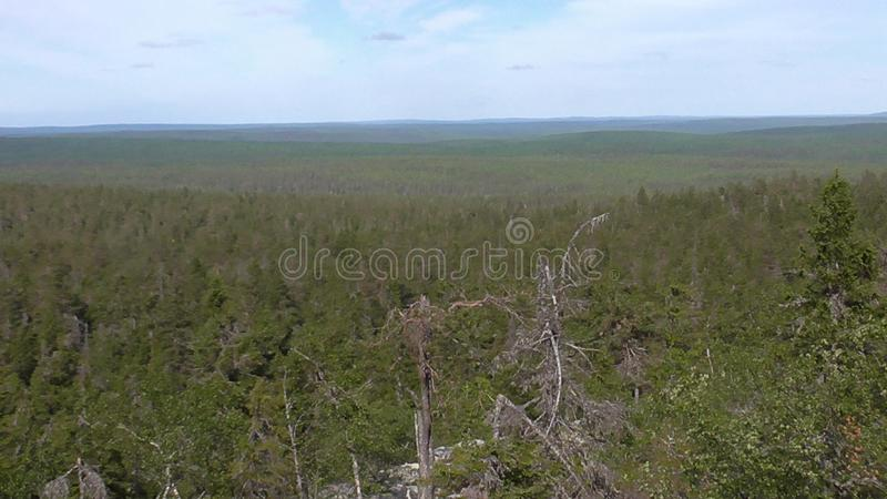 Vottovaara Karelia - view from the top of the rock. Abnormal mountain in Karelia, ugly trees, mystical landscapes. There are more than one and a half thousand stock images