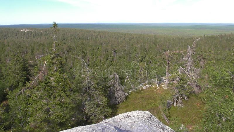 Vottovaara Karelia - view from the top of the rock. Abnormal mountain in Karelia, ugly trees, mystical landscapes. There are more than one and a half thousand royalty free stock photos