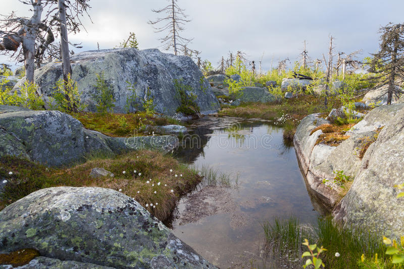 Vottovaara. Landscape Mountain of the Vottovaara in Karelia, Russia stock photography
