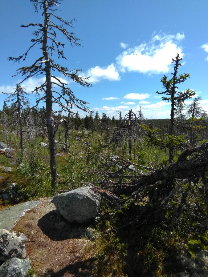 Vottovaara mountain in Karelia royalty free stock photography