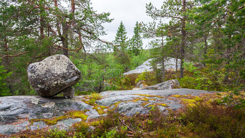 Vottovaara. Stone on Mountain of the Vottovaara in Karelia (Russia royalty free stock image