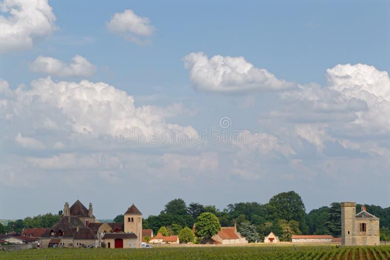 Landscape of Clos de Vougeot royalty free stock photos