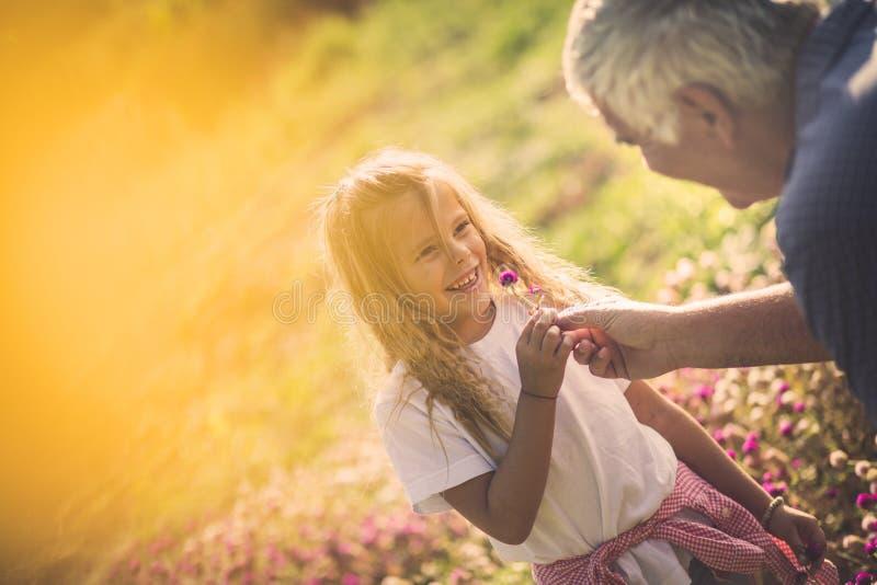 Vous êtes ma petite fleur photographie stock libre de droits