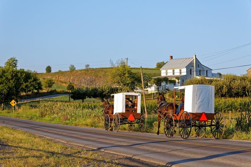 Voyage amish de familles avec le cheval et le chariot images stock