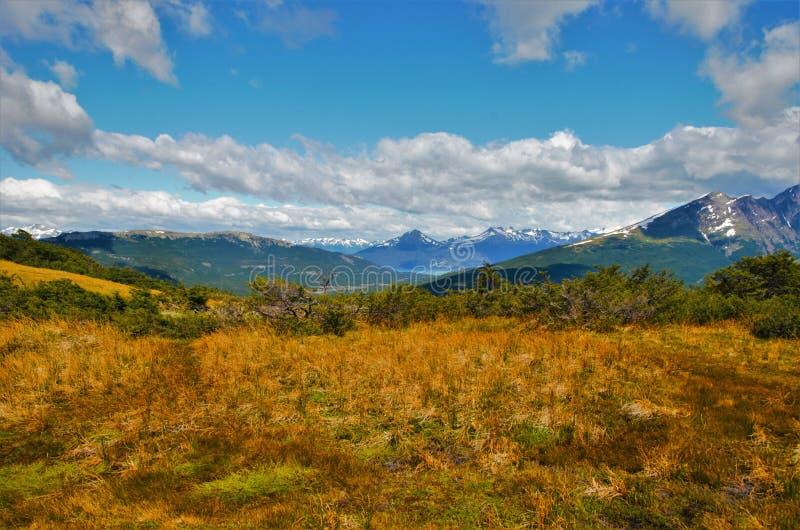 Voyage au Guanaco de Cerro en Tierra del Fuego photographie stock libre de droits