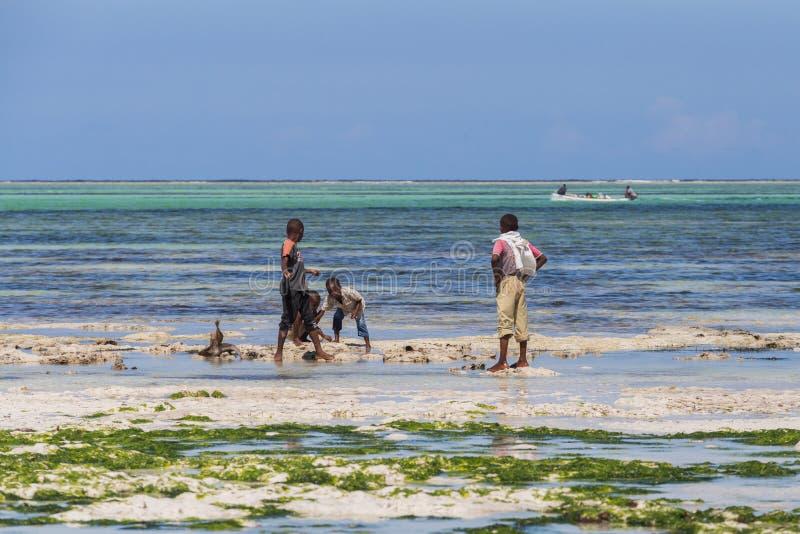 Voyage autour de la Tanzanie Un groupe de pêcheurs africains se tenant sur la plage sur le fond du ciel bleu et de l'océan images stock