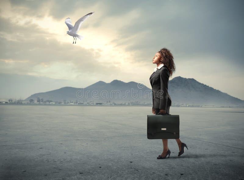 Voyage d'affaires photo libre de droits