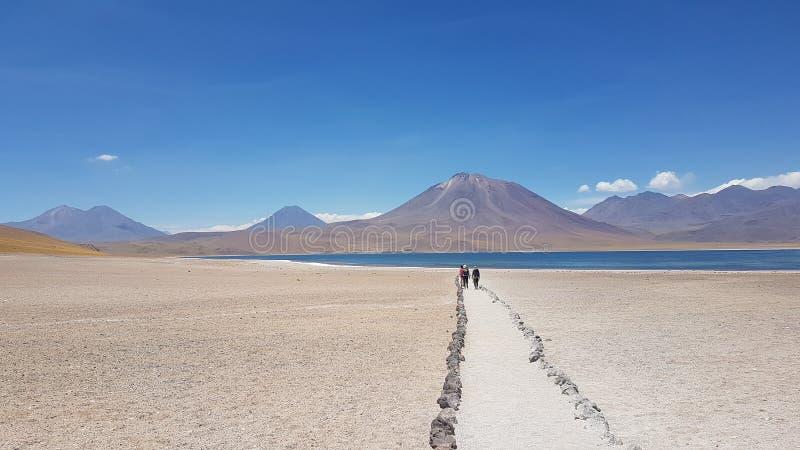 Voyage d'Atacama image libre de droits