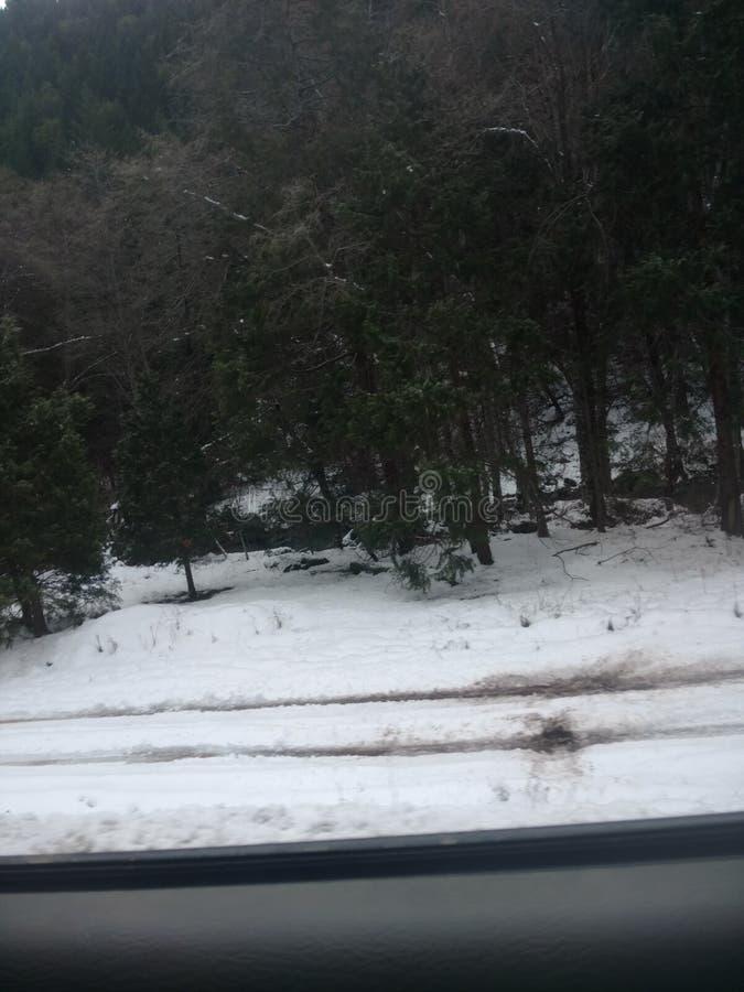 Voyage d'hiver photos libres de droits