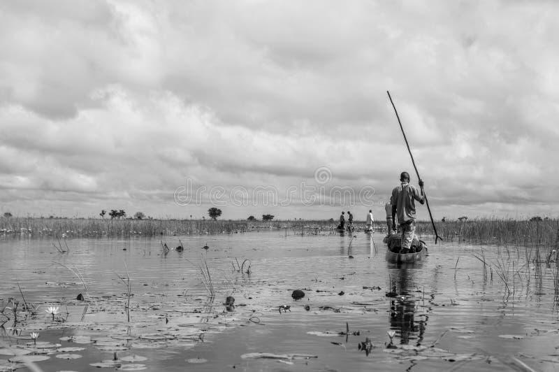 Voyage de canoë de Mokoro dans le delta d'Okavango près de Maun, Botswana photo stock