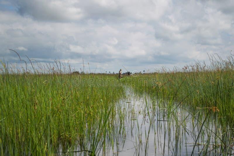 Voyage de canoë de Mokoro dans le delta d'Okavango près de Maun, Botswana photos libres de droits