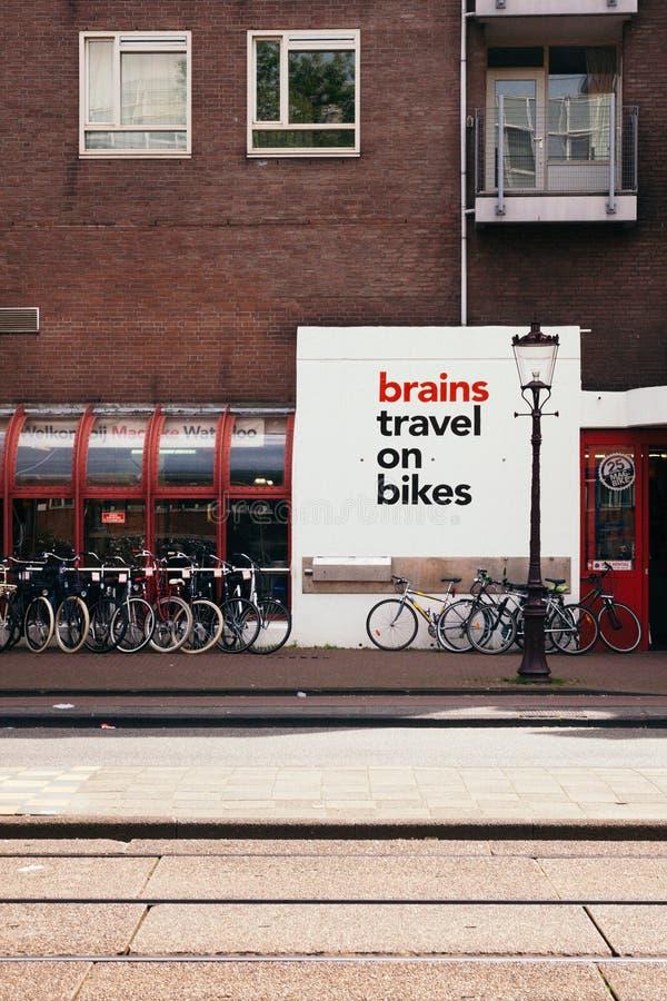 Voyage de cerveaux sur des vélos images stock