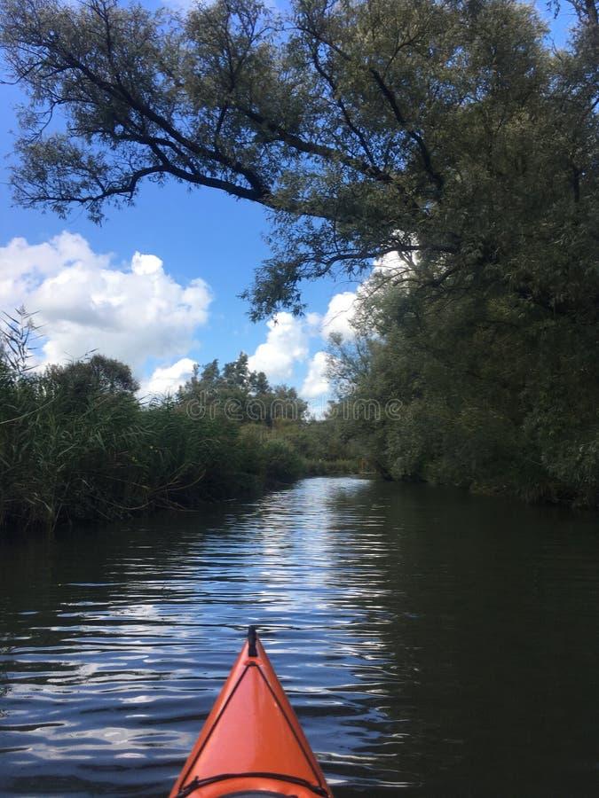 Voyage de kayak dans Biesbosch photos libres de droits