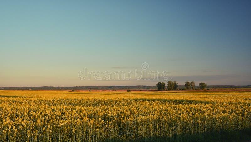 Voyage de nature de paysage photos libres de droits