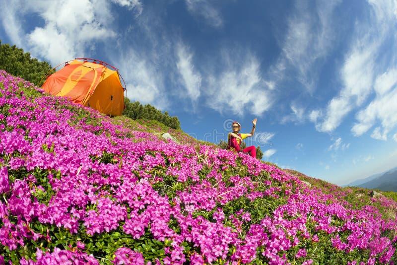 Voyage de ressort dans les Carpathiens parmi les fleurs alpines avec un vélo de montagne raide Ukraine et une tente lumineuse pou photos stock